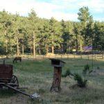 dude ranch photos colorado family adventure vacation