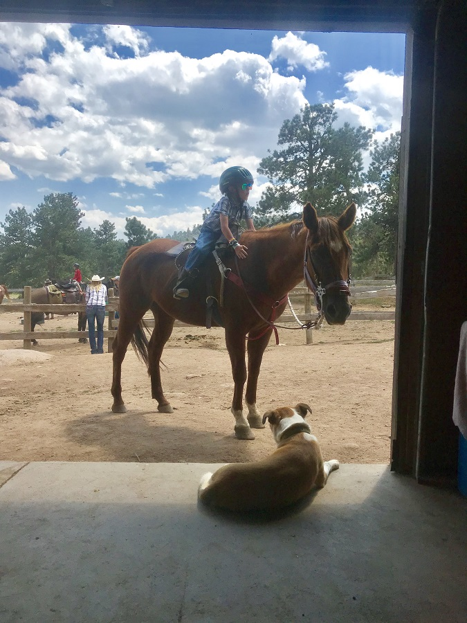 Dude ranch summer 2019 adventure vacation all-inclusive pet friendly guest ranch