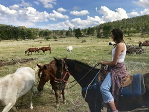 Dude ranch summer adventure vacation all-inclusive pet friendly guest ranch