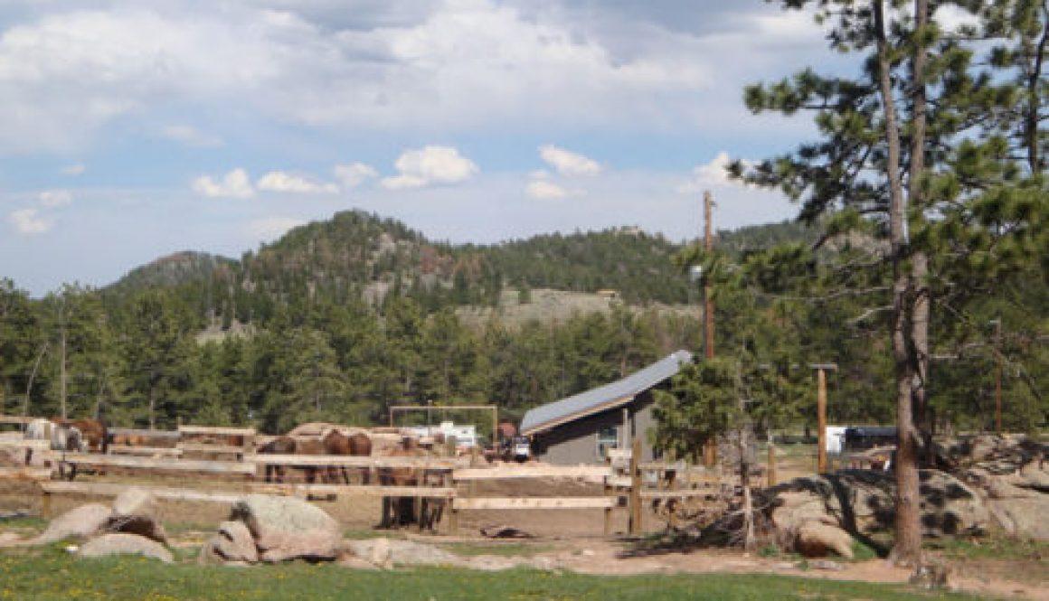 colorado family dude ranch adventure vacation affordable