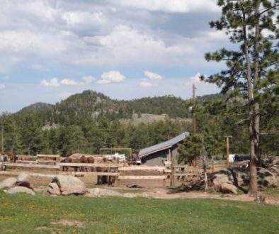colorado family dude ranch adventure vacation affordable