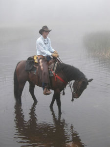 A man rides a horse in a river