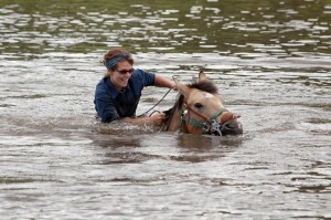 Guest takes a horse for a swim in the pond